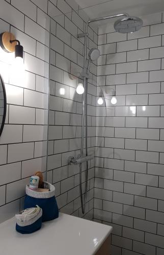 Carrelage mural dans la salle de bains